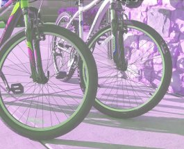 bicycle-friends